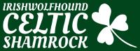 Celtic Shamrock2